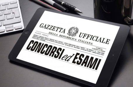 Concorsi Scuola 2020 a ottobre: la promessa della ministra Azzolina
